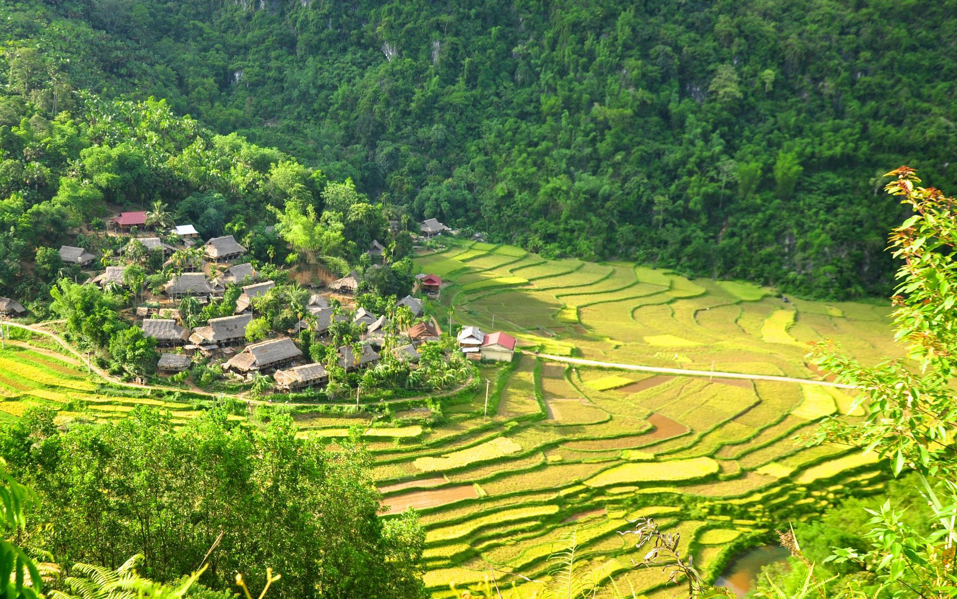 TREKKING OF MAI CHAU THROUGH PU LUONG VILLAGE